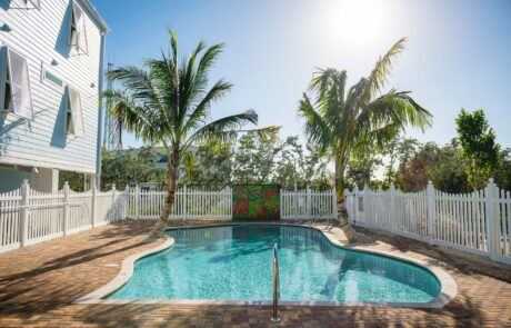 Fenced pool with red brick pavers and two palm trees. Opens larger image in a gallery.